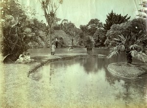Portugal Azores Sao Miguel Furnas Public Garden Park Old Photo Raposo 1890