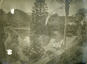 Portugal Azores Sao Miguel Ponta Delgada Count Botelho Gardens Photo Raposo 1890