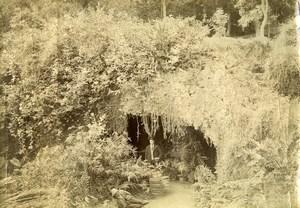 Portugal Azores Sao Miguel Ponta Delgada Count Borges Garden Photo Raposo 1890