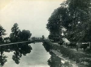 United Kingdom Exeter on the Canal Old Photo Print 1900