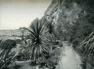 United Kingdom Teignmouth Park Garden Promenade Old Photo Print 1900