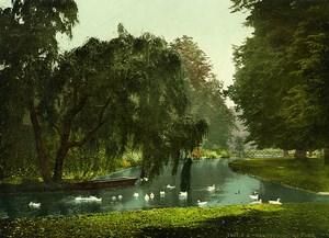 United Kingdom London Hampton Court Park Old Photo Photochrom 1900