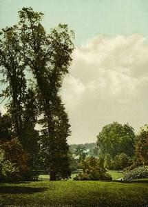 United Kingdom London Richmond Terrace Old Photo Photochrom 1900