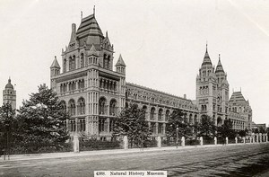 United Kingdom London Londres Natural History Museum Old Photo 1900