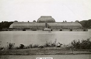 United Kingdom London Londres Kew Gardens Old Photo 1900