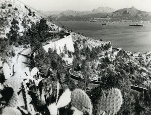 Italy Bay of Palermo Cactus Old Photo 1961
