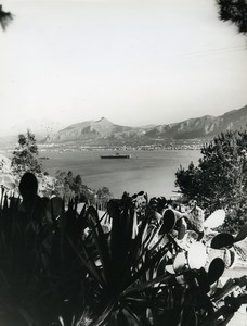 Italy Bay of Palermo Panorama Cactus Old Photo 1961
