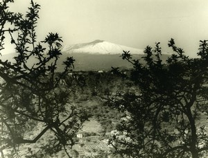 Italy Volcano Etna Panorama Old Photo 1961