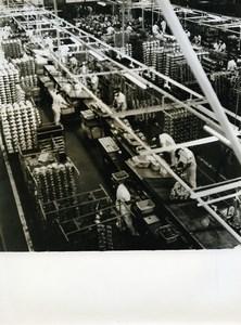 Japan Tokyo? Factory Interior Old Photo 1960