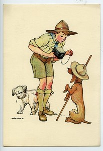 Hungary Postcard Scout Photographer & dogs by Marton 1930