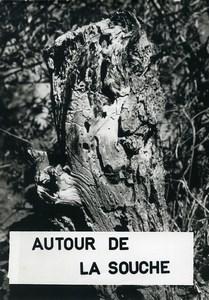 France Photomontage Etude autour de la Souche Photo Abstraite Deplechin 1975 #1