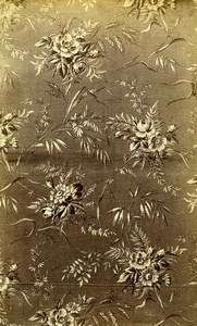 French Albumen Photograph of Antique Fabric Armand Guerinet circa 1880 #24