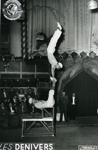 France Music Hall Circus Acrobat les Denivers Old Photo Esnault 1950