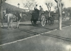 France Horses Cart Study Peasants Old Photo 1900