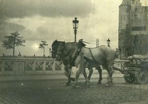 France? Horses Cart Goods Transport Old Photo 1900