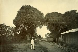 Madagascar la voie ferrée à Anivorano Ancienne Photo Ramahandry 1910'