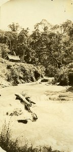 Madagascar Ampaisokely Foret Riviere Ancienne Photo Ramahandry 1910'