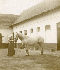 France Around Boulogne sur Mer Countryside Horse Old Photo 1900