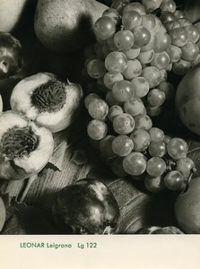 Publicity for Leonar Agfa paper Leigrano 122 Still Life Fruits old Photo 1960