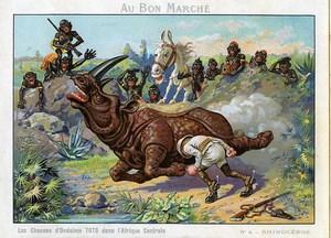 Les Chasses de Toto Photographe en Afrique Rhinoceros Chromo Bon Marché 1900