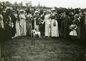 France WWI Artists Repatriation French Fashion & small Dogs Branger Photo 1910's