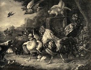 France Painting Artwork Poultry Roosters & Hens old Photo Goupil? 1860