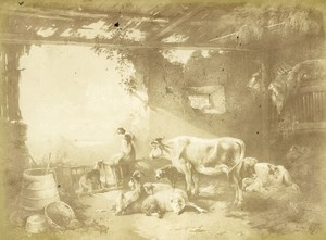 Germany Painting Artwork Animals in a Barn old Photo Albert 1855