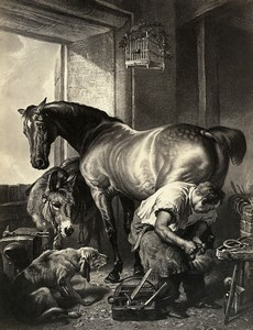 Germany Painting Artwork Blacksmith Farrier old Photo Albert 1855