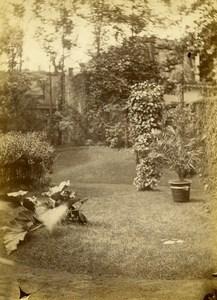 Algerie Alger villa du Docteur Roussot Jardin Ancienne Photo 1890