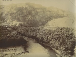 Algeria Oasis Djemmorah Oued Abdi Wadi Old Photo Emile Frechon 1900