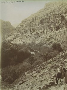 Algeria gardens in Gorge of Oued Fedhala Wadi Old Photo Emile Frechon 1900