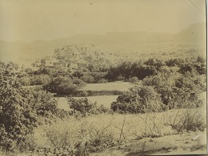 Algeria Beni-Ferah village & gardens Old Photo Emile Frechon 1900