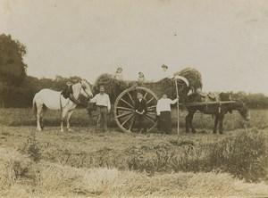 France Countryside Farmers Harvest Farm Old Photo 1900