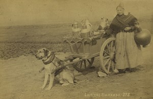 Belgium Flemish milkwoman Dog Cart Old Photo 1890