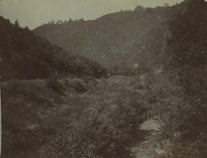 Belgique Campagne environs de Dinant Ancienne Photo 1890