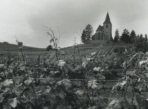 France Photographic Study Church Vineyard Old Deplechin Photo 1970