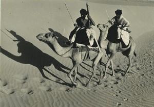 Algérie Chameliers dans le Désert Sahara? Ancienne Photo Duchemin 1970's