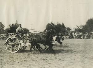 France Saint Cyr Military School Review Fantasia Old Henri Manuel Photo 1927 #6