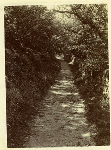 North Yorkshire Scarborough Forest Path Holidays old Amateur Photo 1900