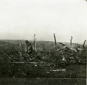 France WWI Downed German Aircraft Military Aviation old SIP Photo 1914-1918