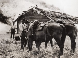 Russia German Soldiers Cavalry Horse Burning Farm WWII WW2 Old Photo 1941
