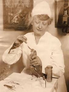 New York Vet Dr Florence Jenkins Bird Specialist Old Photo 1927