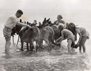 Ramsgate Holiday Makers helping Donkey Driver First Bath of Season Photo 1930's