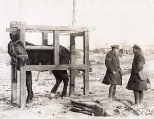 Belgique ou France? WWI Front de l'Ouest Marechal-Ferrant Ancienne Photo 1914-1918