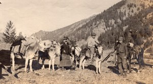 Idaho Roughing it in Mountains Group & Mules Old amateur Snapshot Photo 1916