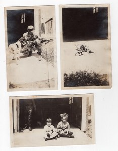 USA Dog & Cute Puppies Children Portraits 3 Old amateur Snapshot Photos 1920