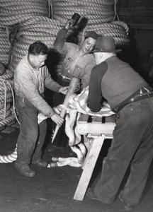 San Francisco Port of Embarkation Fort Mason Rope Making Signal Corps Photo 1945