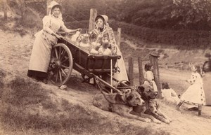Laitiere Flamande Dairywoman Belgium? Dogs & Cart Milk Cans Old Photo 1890