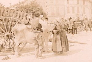 France Angouleme Market Scene Cow Old Photo H Billard 1893