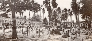 Colombia Cartagena Cemetery Palm Trees old GJ Becker Photo 1910's